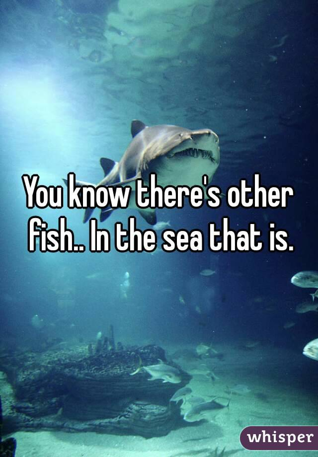 You know there's other fish.. In the sea that is.