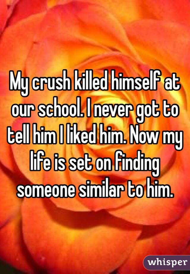 My crush killed himself at our school. I never got to tell him I liked him. Now my life is set on finding someone similar to him.