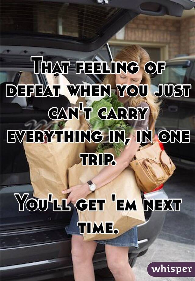 That feeling of defeat when you just can't carry everything in, in one trip.  You'll get 'em next time.