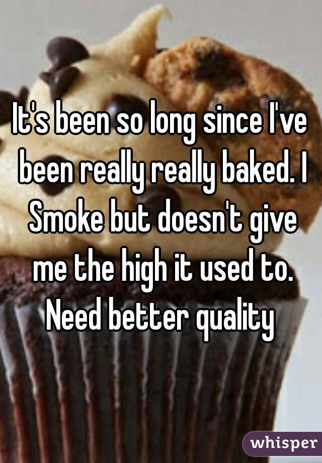 It's been so long since I've been really really baked. I Smoke but doesn't give me the high it used to. Need better quality