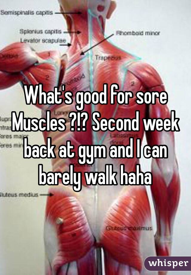 What's good for sore Muscles ?!? Second week back at gym and I can barely walk haha