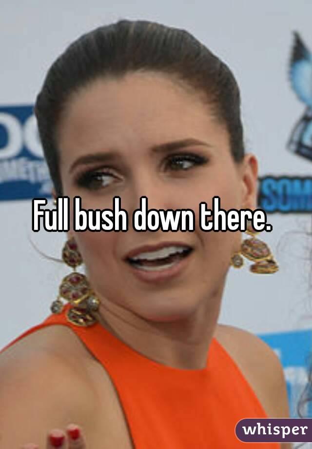 Bushdown