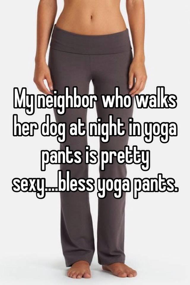 dog pants at night