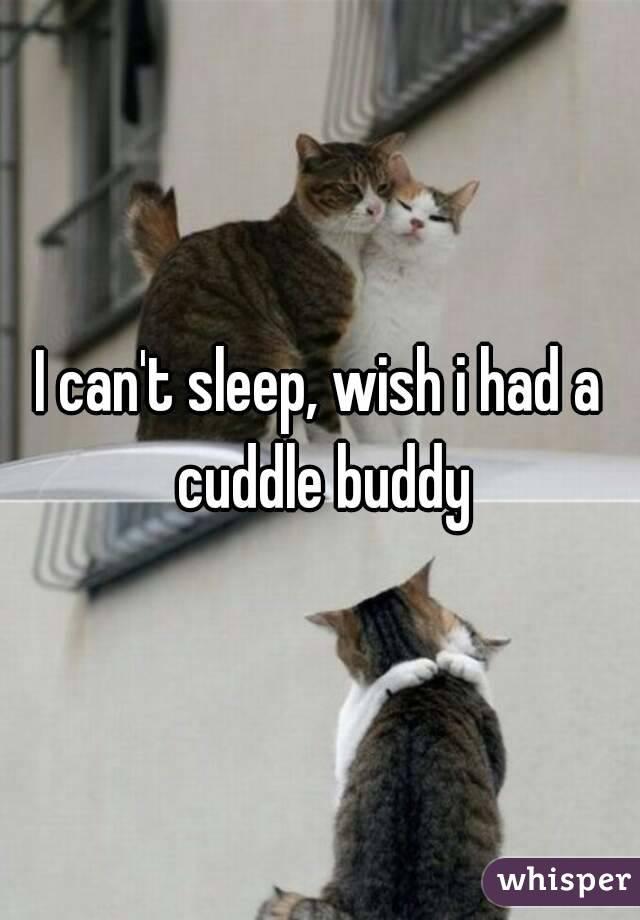I can't sleep, wish i had a cuddle buddy