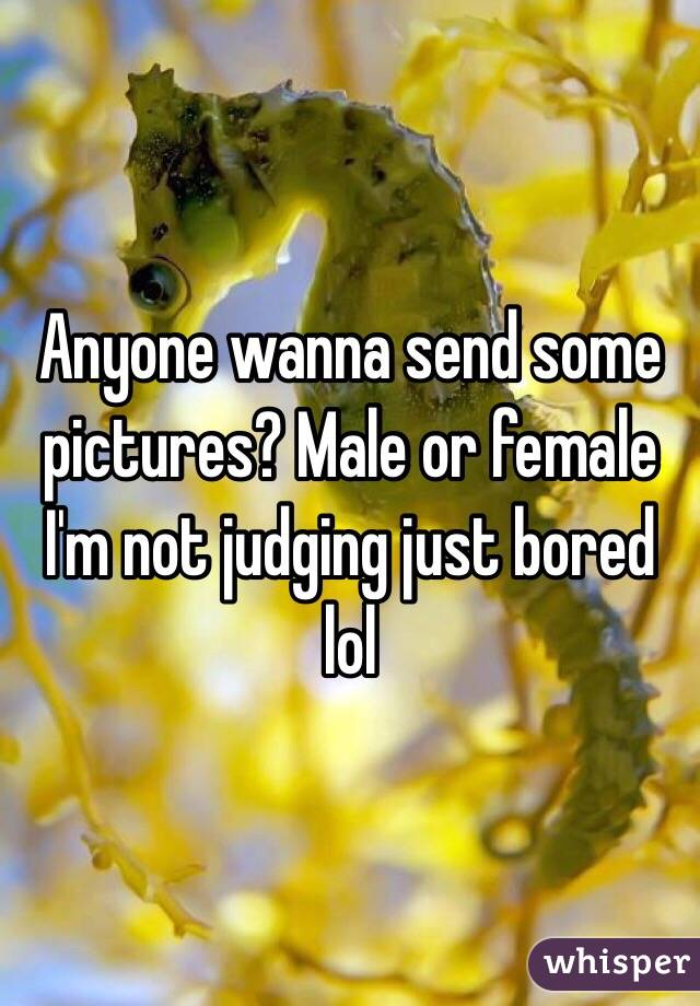 Anyone wanna send some pictures? Male or female I'm not judging just bored lol