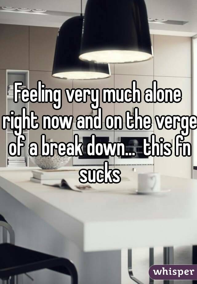 Feeling very much alone right now and on the verge of a break down...  this fn sucks