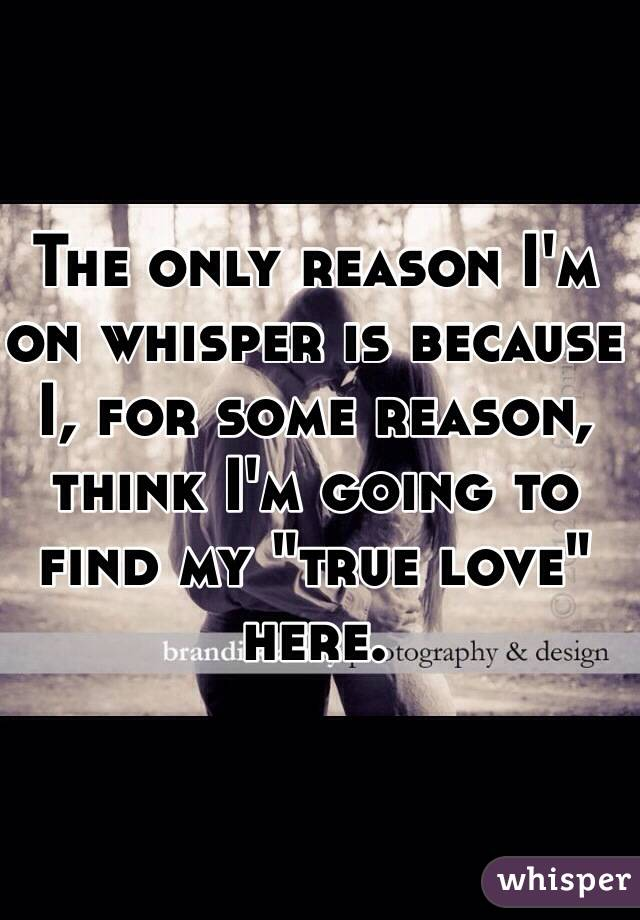"""The only reason I'm on whisper is because I, for some reason, think I'm going to find my """"true love"""" here."""