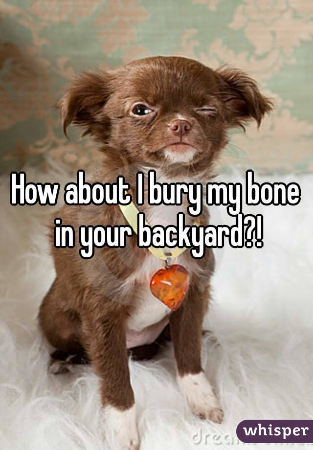 How about I bury my bone in your backyard?!