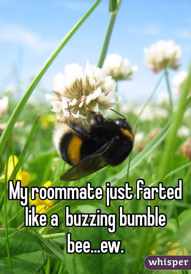 My roommate just farted like a  buzzing bumble bee...ew.
