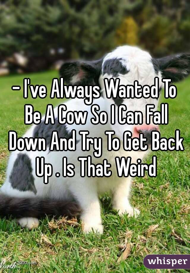 - I've Always Wanted To Be A Cow So I Can Fall Down And Try To Get Back Up . Is That Weird