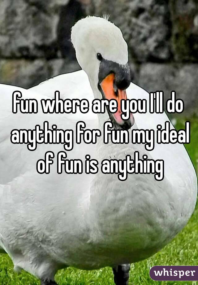 fun where are you I'll do anything for fun my ideal of fun is anything