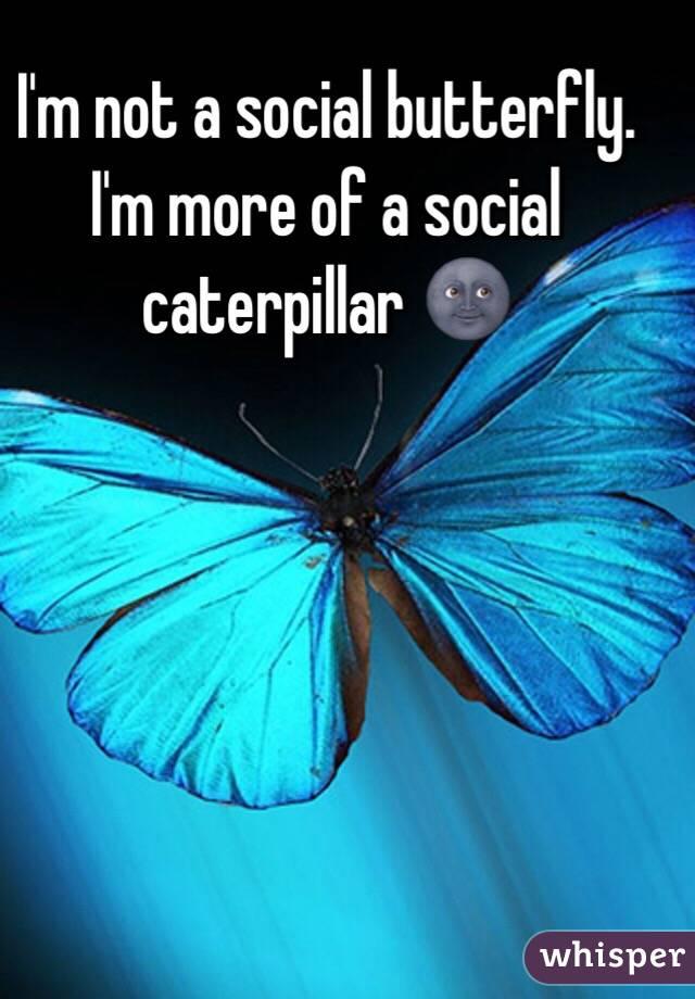 I'm not a social butterfly. I'm more of a social caterpillar 🌚