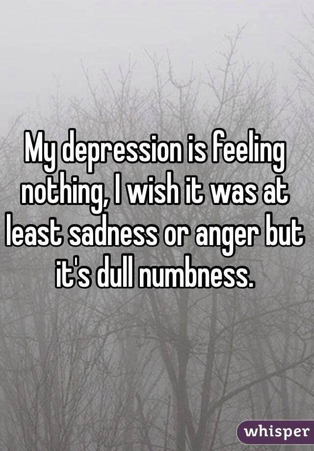 My depression is feeling nothing, I wish it was at least sadness or anger but it's dull numbness.