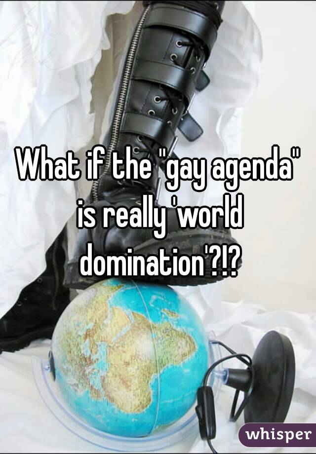"""What if the """"gay agenda"""" is really 'world domination'?!?"""