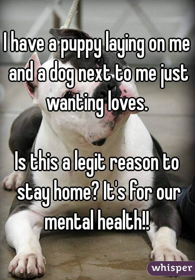 I have a puppy laying on me and a dog next to me just wanting loves.   Is this a legit reason to stay home? It's for our mental health!!