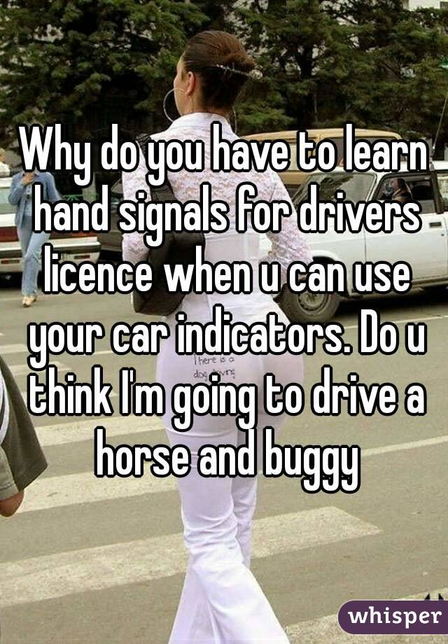 Why do you have to learn hand signals for drivers licence when u can use your car indicators. Do u think I'm going to drive a horse and buggy