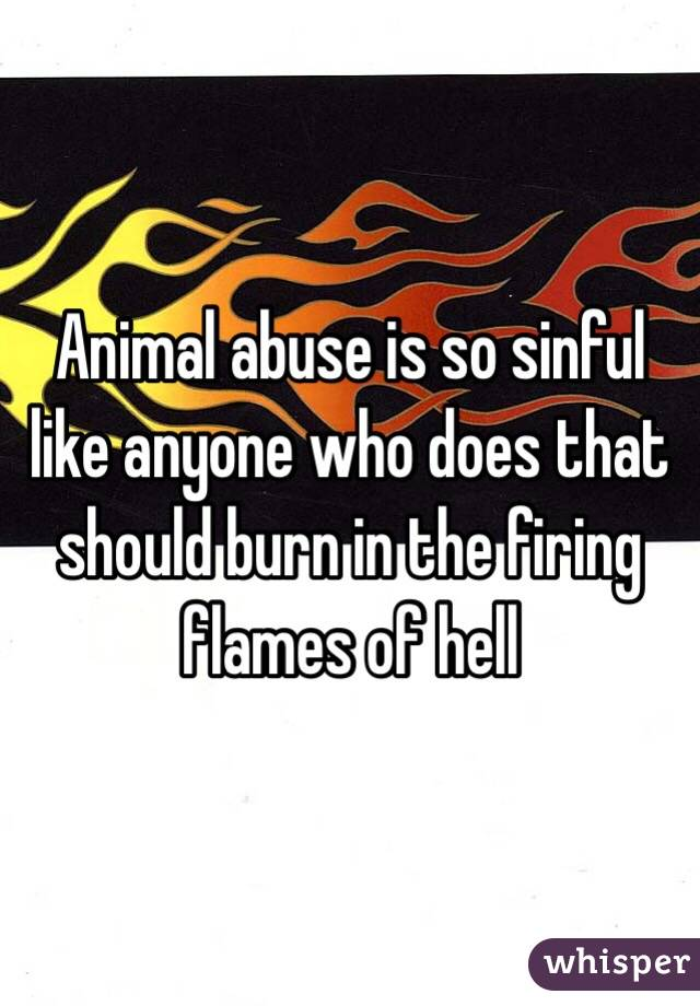 Animal abuse is so sinful like anyone who does that should burn in the firing flames of hell