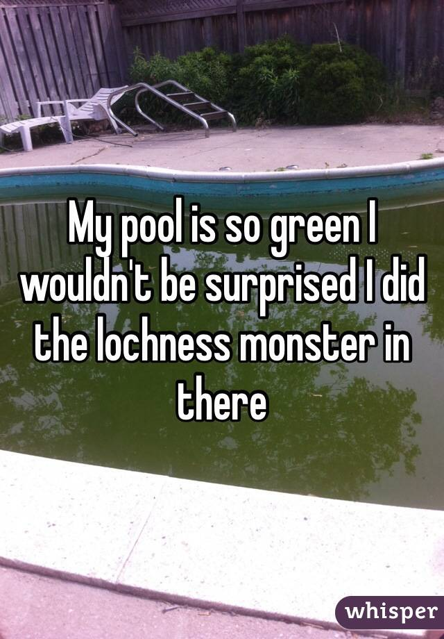 My pool is so green I wouldn't be surprised I did the lochness monster in there