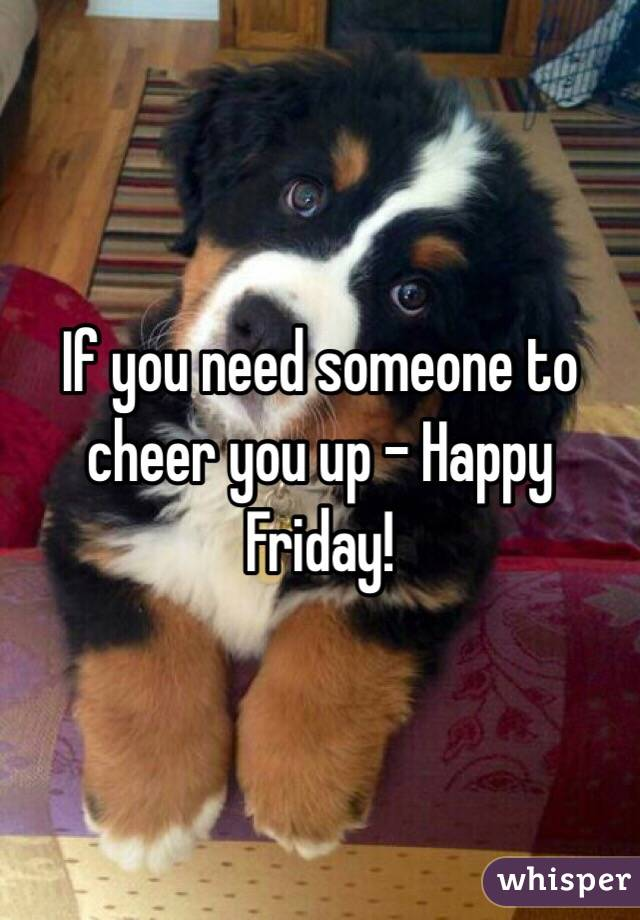 If you need someone to cheer you up - Happy Friday!
