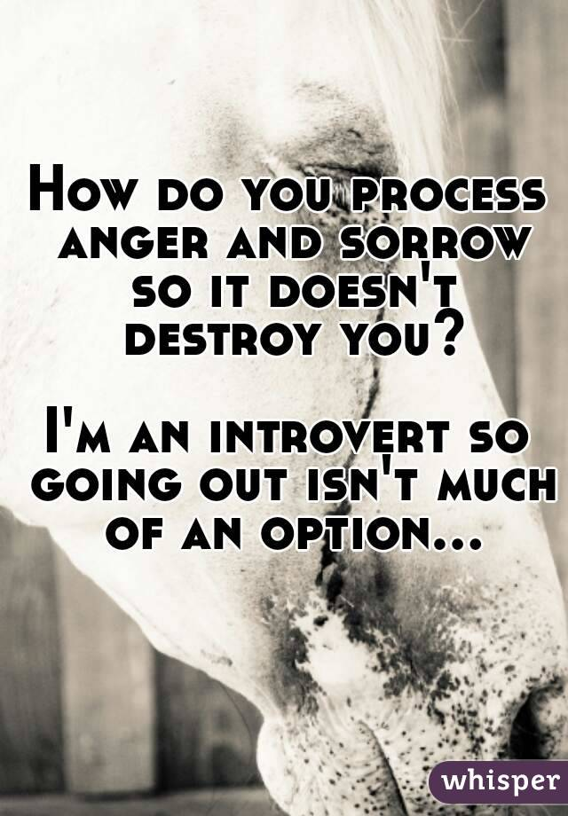 How do you process anger and sorrow so it doesn't destroy you?  I'm an introvert so going out isn't much of an option...