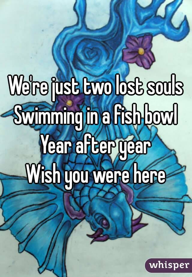 We're just two lost souls Swimming in a fish bowl Year after year Wish you were here