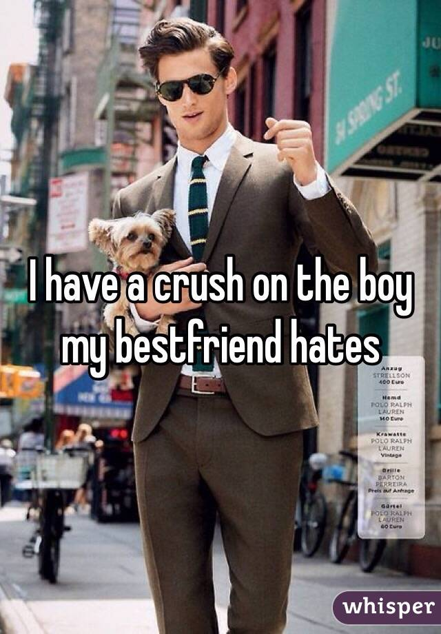 I have a crush on the boy my bestfriend hates