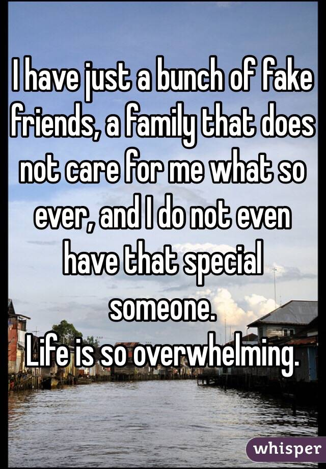 I have just a bunch of fake friends, a family that does not care for me what so ever, and I do not even have that special someone.  Life is so overwhelming.