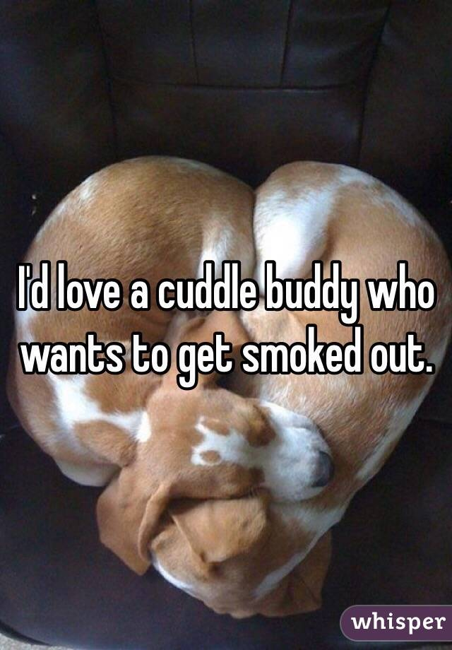 I'd love a cuddle buddy who wants to get smoked out.