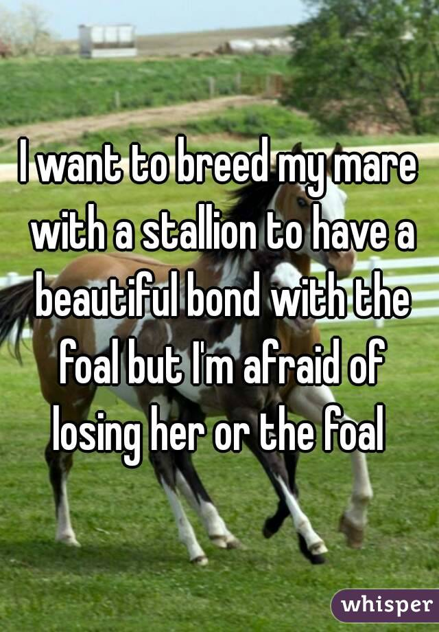 I want to breed my mare with a stallion to have a beautiful bond with the foal but I'm afraid of losing her or the foal