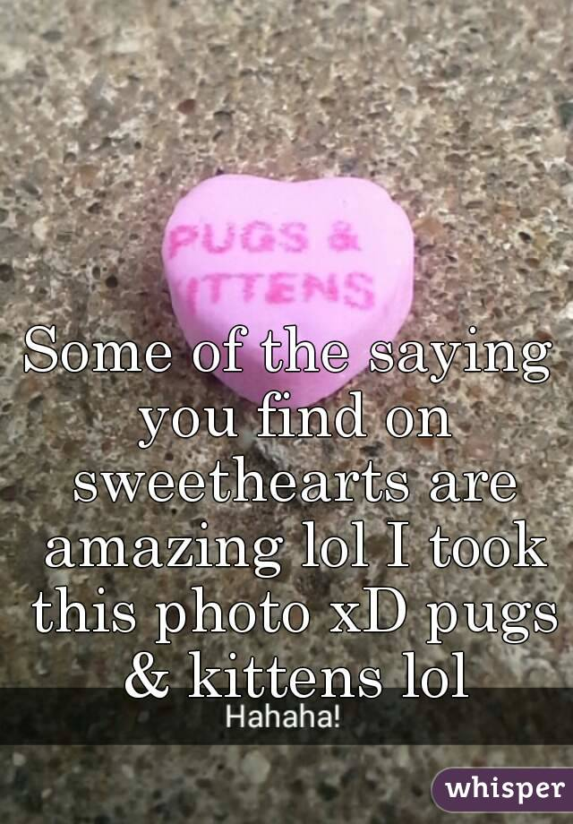 Some of the saying you find on sweethearts are amazing lol I took this photo xD pugs & kittens lol