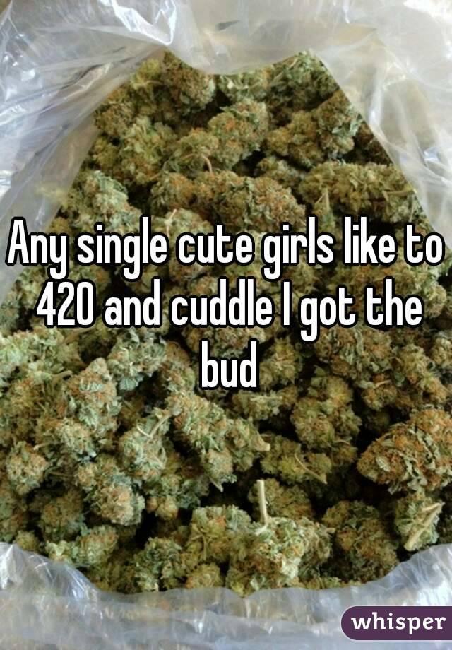 Any single cute girls like to 420 and cuddle I got the bud