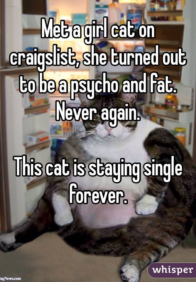 Met a girl cat on craigslist, she turned out to be a psycho and fat. Never again.  This cat is staying single forever.