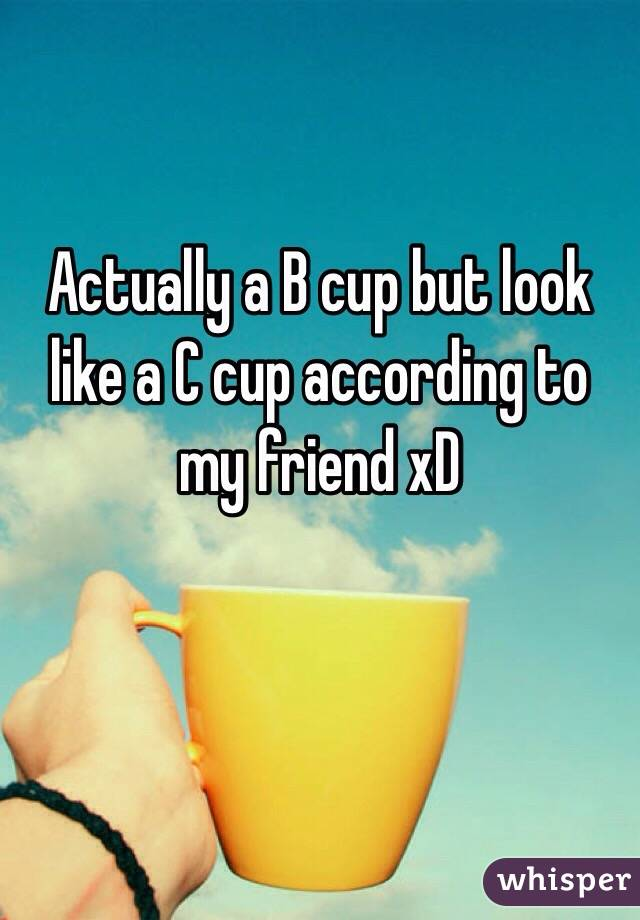 Actually a B cup but look like a C cup according to my friend xD