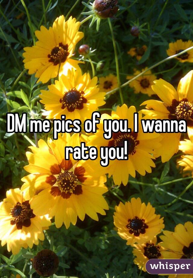 DM me pics of you. I wanna rate you!