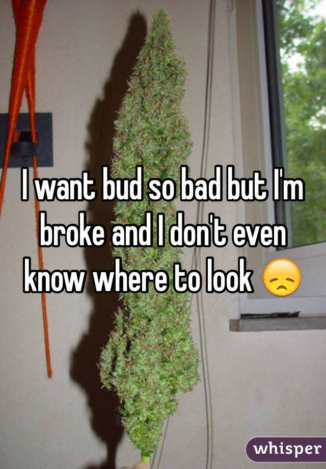 I want bud so bad but I'm broke and I don't even know where to look 😞