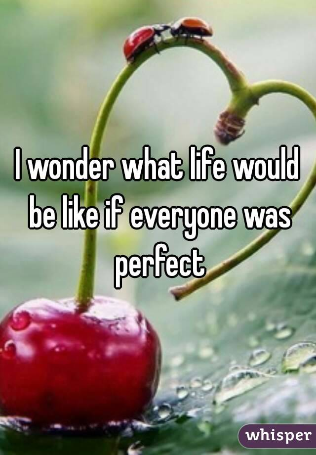 I wonder what life would be like if everyone was perfect