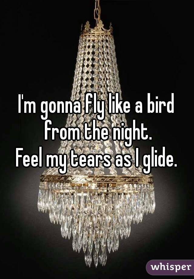 I'm gonna fly like a bird from the night. Feel my tears as I glide.