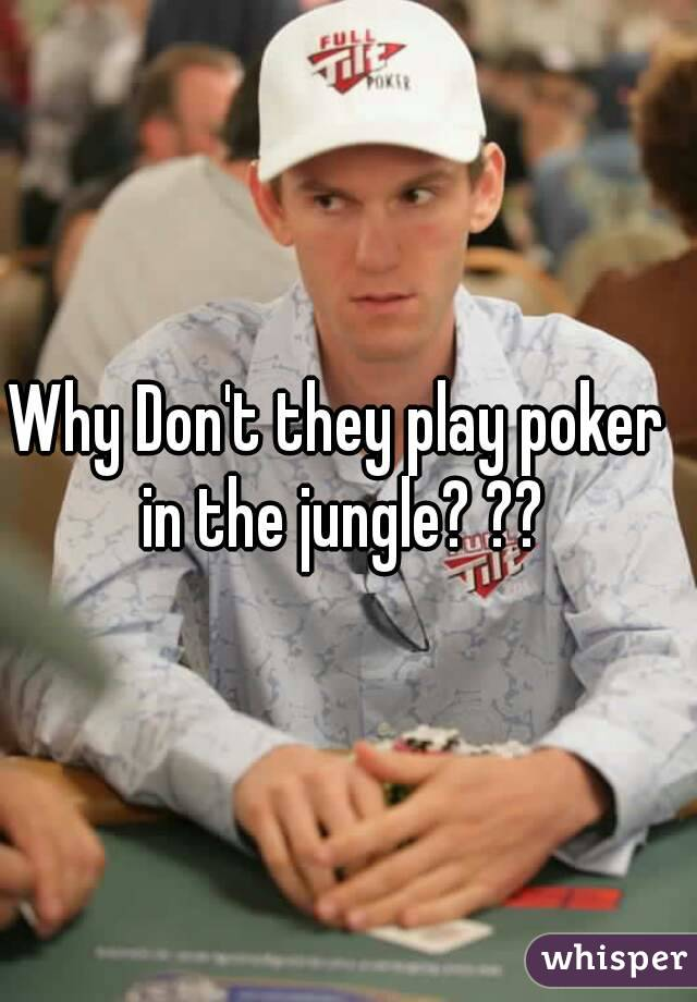 Why Don't they play poker in the jungle? ??