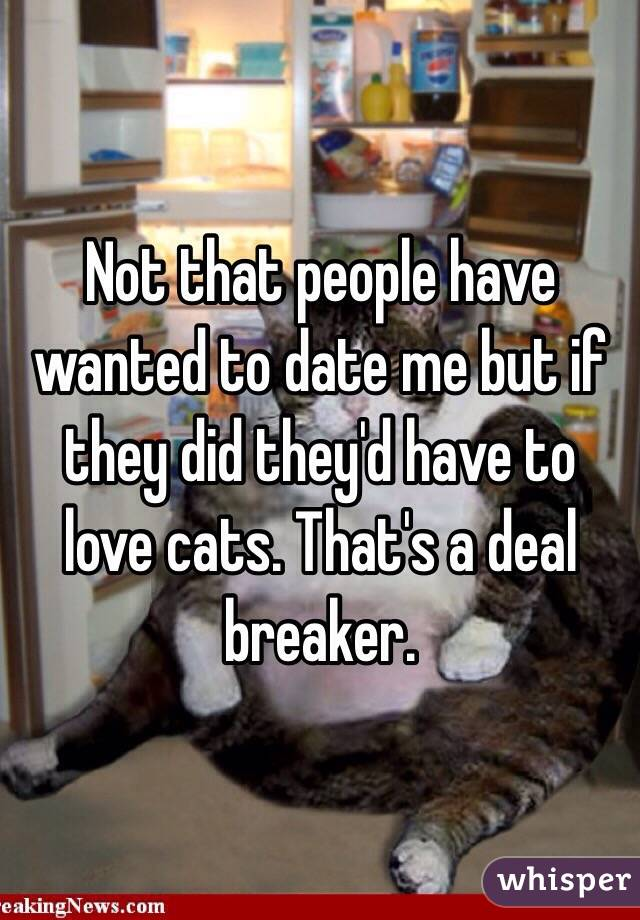 Not that people have wanted to date me but if they did they'd have to love cats. That's a deal breaker.