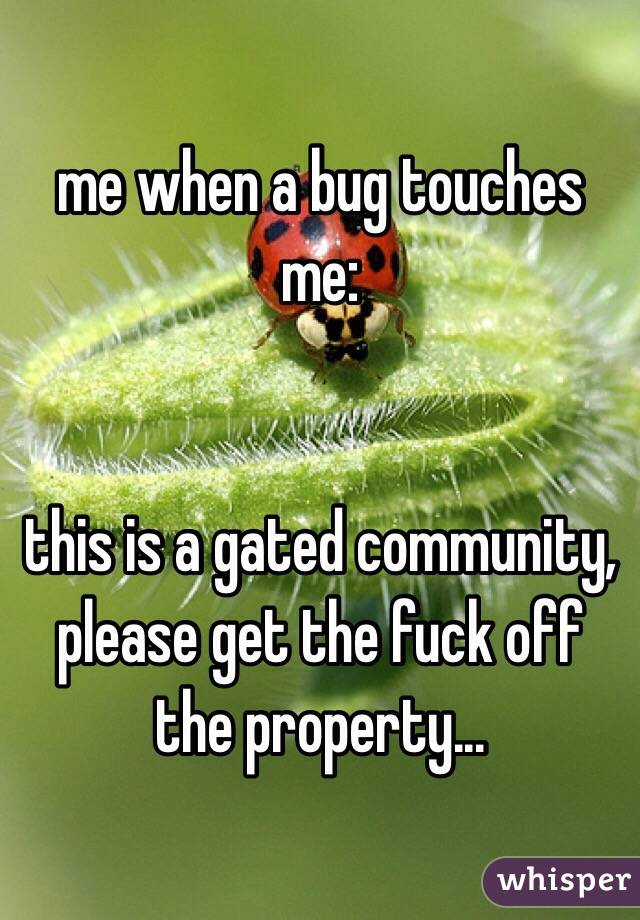 me when a bug touches me:   this is a gated community, please get the fuck off the property...