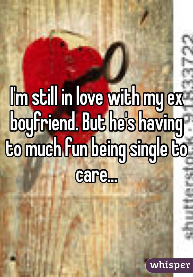 I'm still in love with my ex boyfriend. But he's having to much fun being single to care...