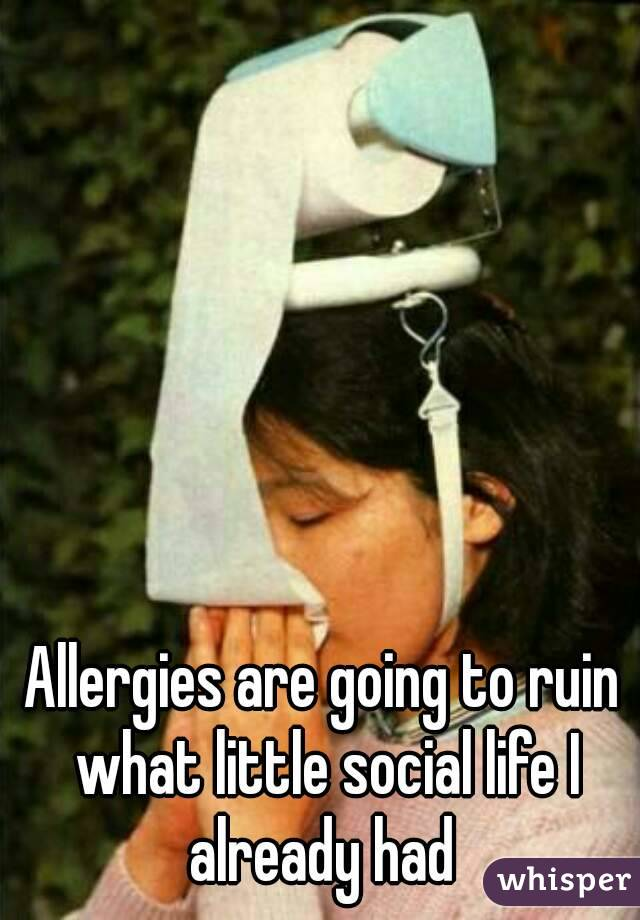 Allergies are going to ruin what little social life I already had