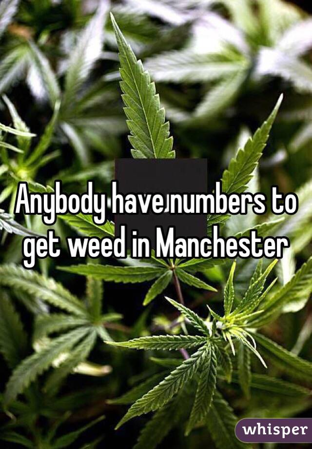 Anybody have numbers to get weed in Manchester