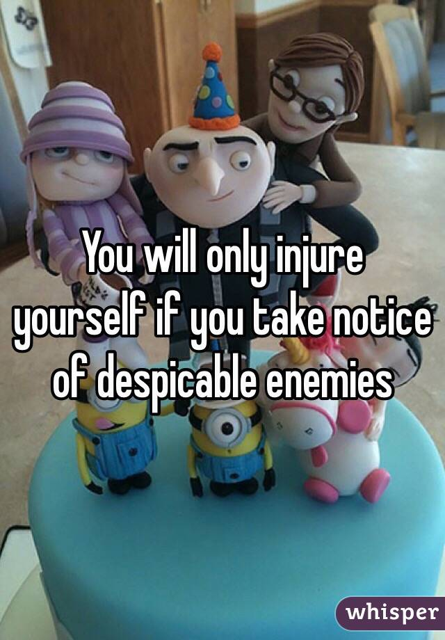 You will only injure yourself if you take notice of despicable enemies