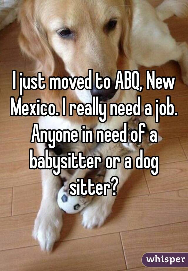 I just moved to ABQ, New Mexico. I really need a job. Anyone in need of a babysitter or a dog sitter?