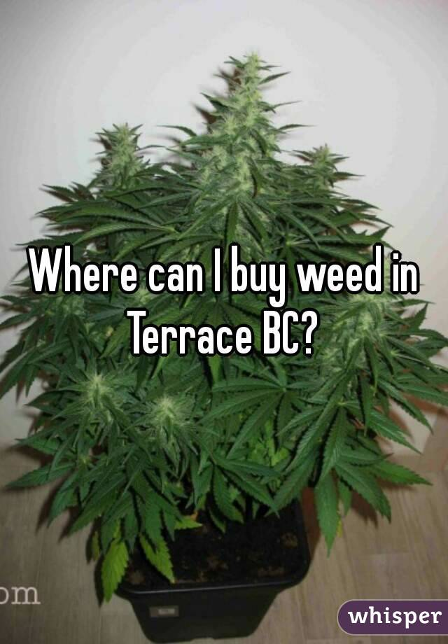 Where can I buy weed in Terrace BC?