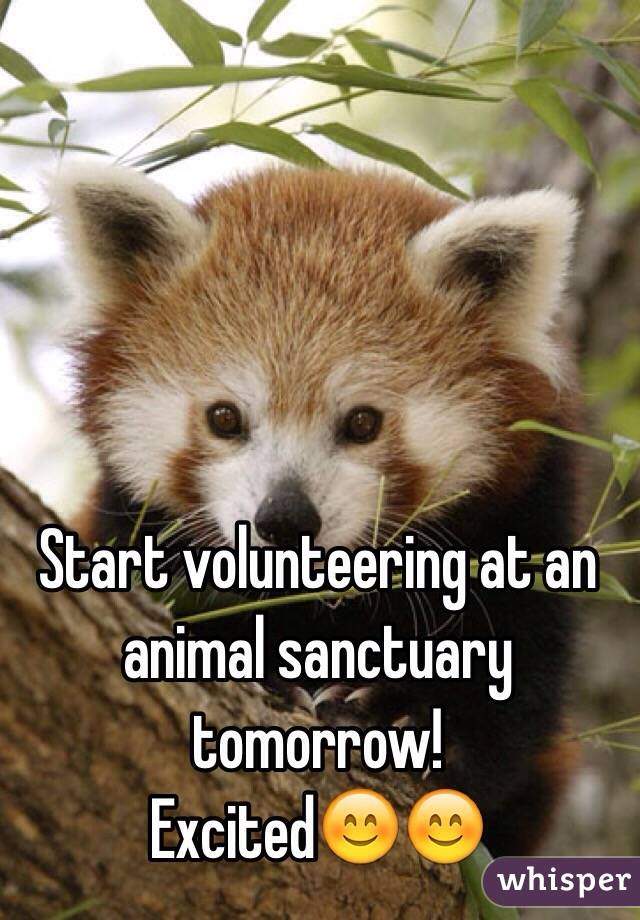 Start volunteering at an animal sanctuary tomorrow!  Excited😊😊