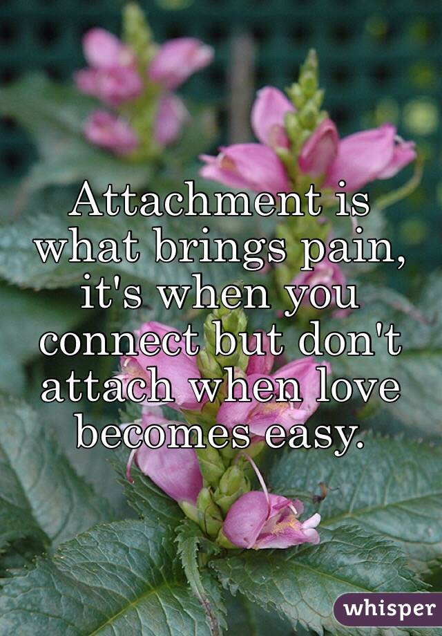 Attachment is what brings pain, it's when you connect but don't attach when love becomes easy.