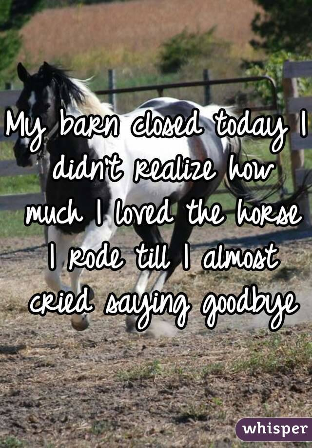 My barn closed today I didn't realize how much I loved the horse I rode till I almost cried saying goodbye