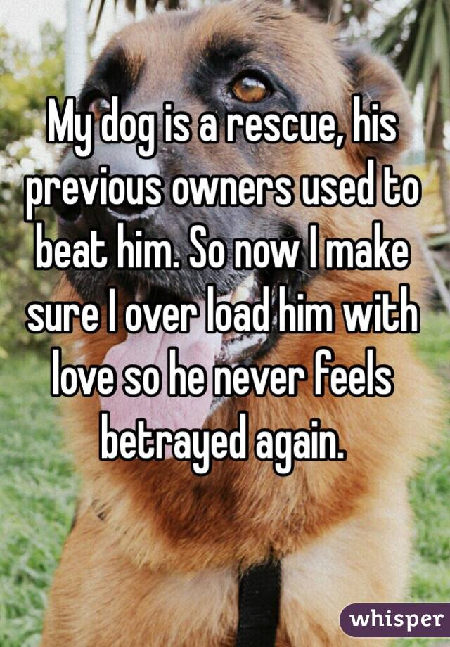 My dog is a rescue, his previous owners used to beat him. So now I make sure I over load him with love so he never feels betrayed again.